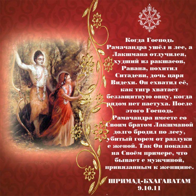 Когда Господь Рамачандра ушёл в лес, а Лакшмана отлучился, худший из ракшасов, Равана, похитил Ситадеви, дочь царя Видехи. Он схватил её, как тигр хватает беззащитную овцу, когда рядом нет пастуха. После этого Господь Рамачандра вместе со Своим братом Лакшманой долго бродил по лесу, убитый горем от разлуки с женой. Так Он показал на Своём примере, что бывает с мужчиной, привязанным к женщине.