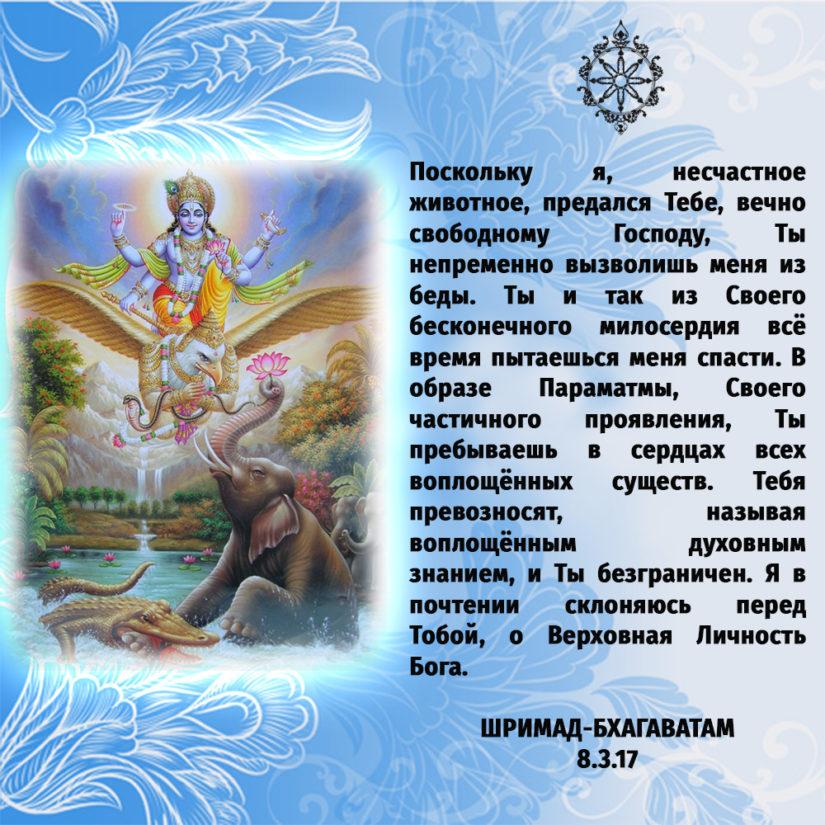 Поскольку я, несчастное животное, предался Тебе, вечно свободному Господу, Ты непременно вызволишь меня из беды. Ты и так из Своего бесконечного милосердия всё время пытаешься меня спасти. В образе Параматмы, Своего частичного проявления, Ты пребываешь в сердцах всех воплощённых существ. Тебя превозносят, называя воплощённым духовным знанием, и Ты безграничен. Я в почтении склоняюсь перед Тобой, о Верховная Личность Бога.
