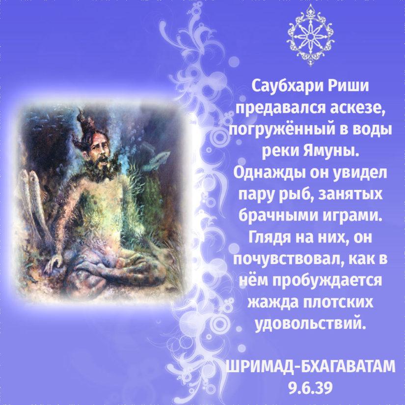 Саубхари Риши предавался аскезе, погружённый в воды реки Ямуны. Однажды он увидел пару рыб, занятых брачными играми. Глядя на них, он почувствовал, как в нём пробуждается жажда плотских удовольствий.