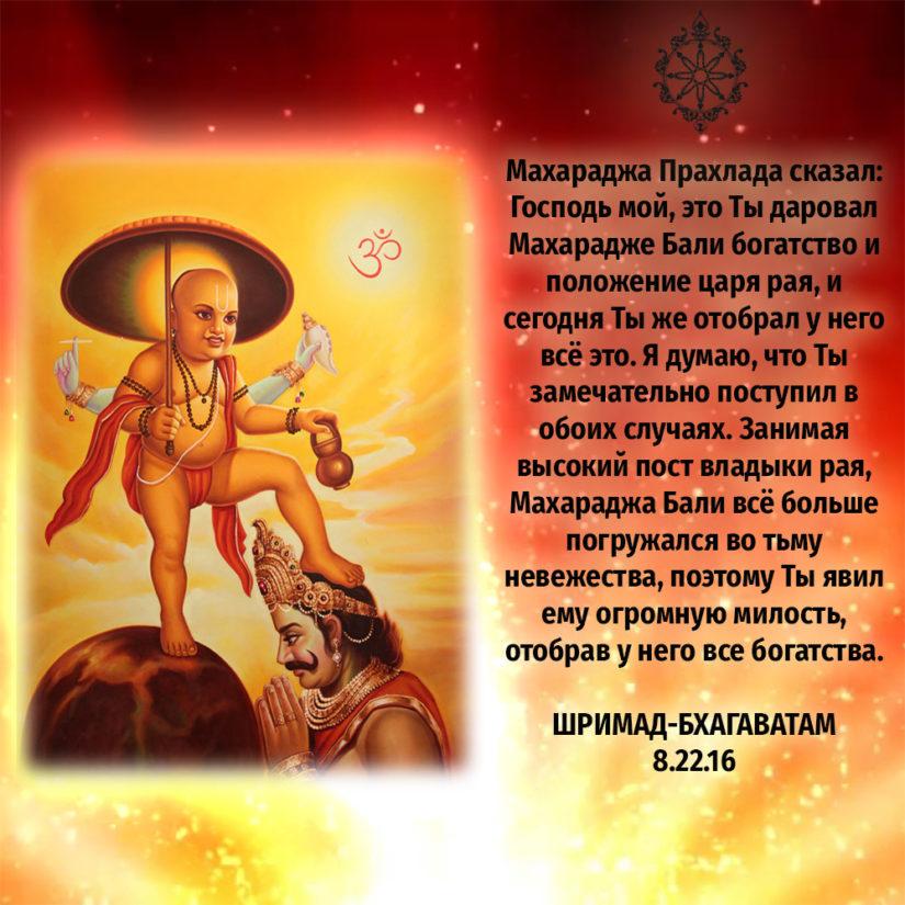 Махараджа Прахлада сказал: Господь мой, это Ты даровал Махарадже Бали богатство и положение царя рая, и сегодня Ты же отобрал у него всё это. Я думаю, что Ты замечательно поступил в обоих случаях. Занимая высокий пост владыки рая, Махараджа Бали всё больше погружался во тьму невежества, поэтому Ты явил ему огромную милость, отобрав у него все богатства.