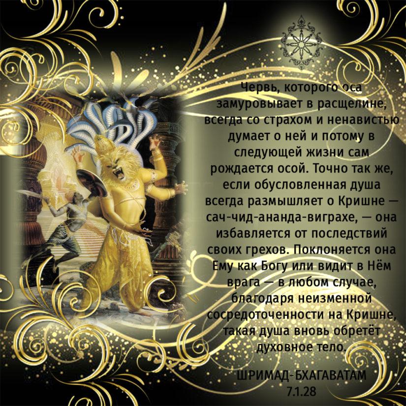 Червь, которого оса замуровывает в расщелине, всегда со страхом и ненавистью думает о ней и потому в следующей жизни сам рождается осой. Точно так же, если обусловленная душа всегда размышляет о Кришне — сач-чид-ананда-виграхе, — она избавляется от последствий своих грехов. Поклоняется она Ему как Богу или видит в Нём врага — в любом случае, благодаря неизменной сосредоточенности на Кришне, такая душа вновь обретёт духовное тело.