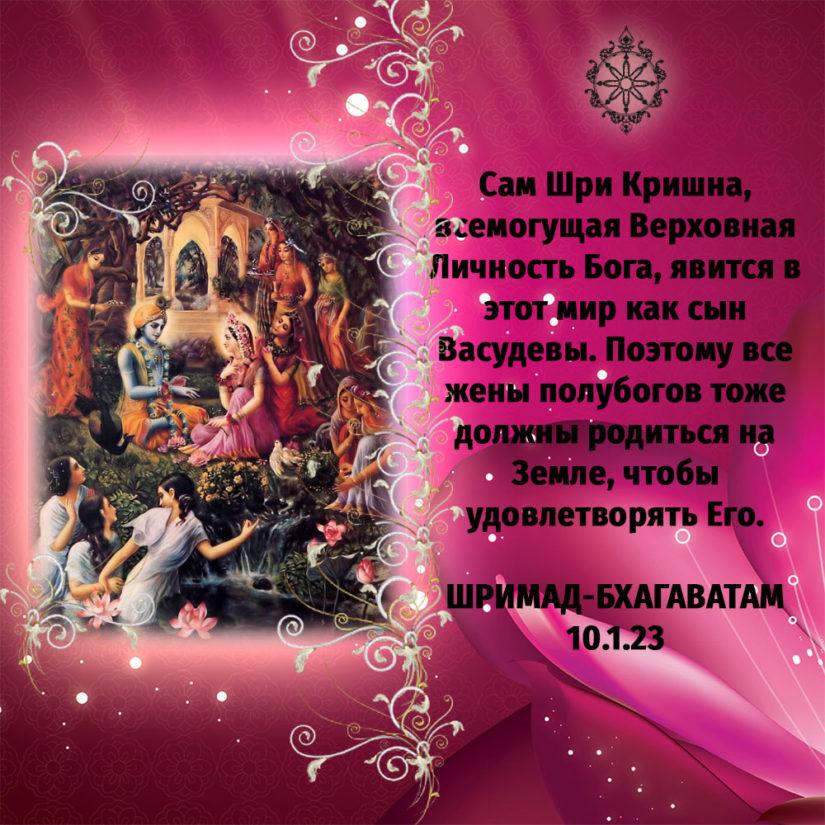 Сам Шри Кришна, всемогущая Верховная Личность Бога, явится в этот мир как сын Васудевы. Поэтому все жены полубогов тоже должны родиться на Земле, чтобы удовлетворять Его.