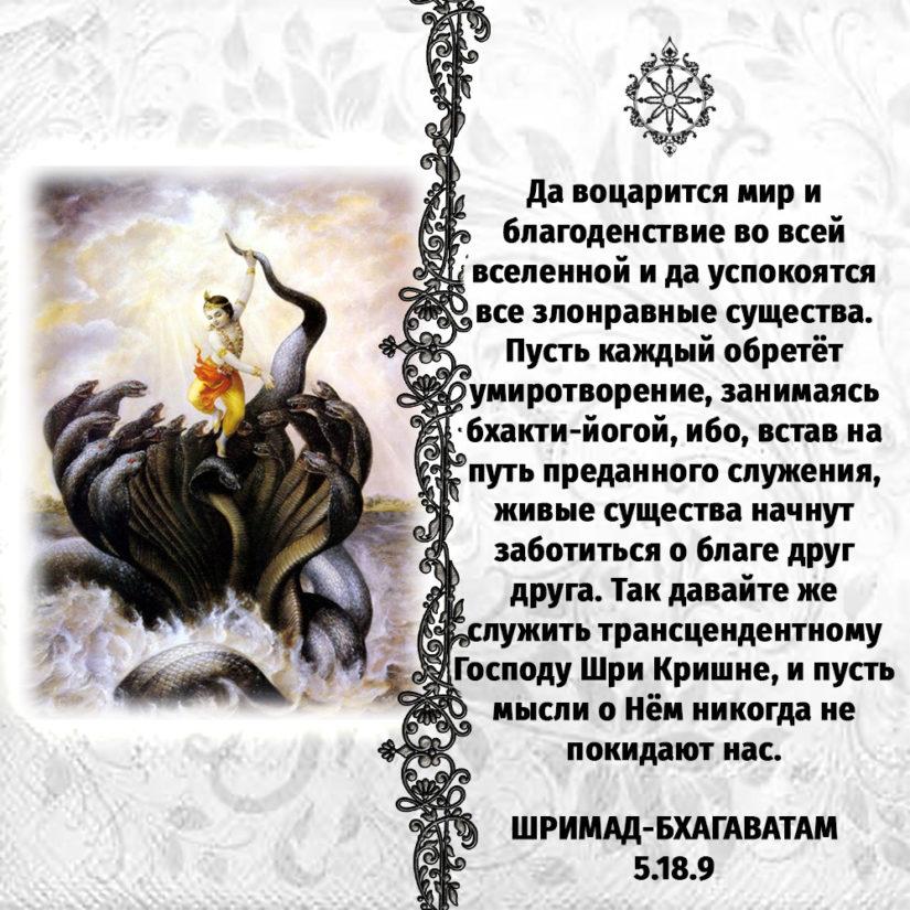 Да воцарится мир и благоденствие во всей вселенной и да успокоятся все злонравные существа. Пусть каждый обретёт умиротворение, занимаясь бхакти-йогой, ибо, встав на путь преданного служения, живые существа начнут заботиться о благе друг друга. Так давайте же служить трансцендентному Господу Шри Кришне, и пусть мысли о Нём никогда не покидают нас.