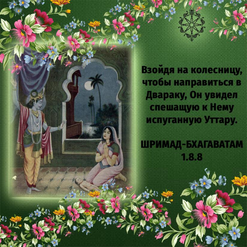 Взойдя на колесницу, чтобы направиться в Двараку, Он увидел спешащую к Нему испуганную Уттару.