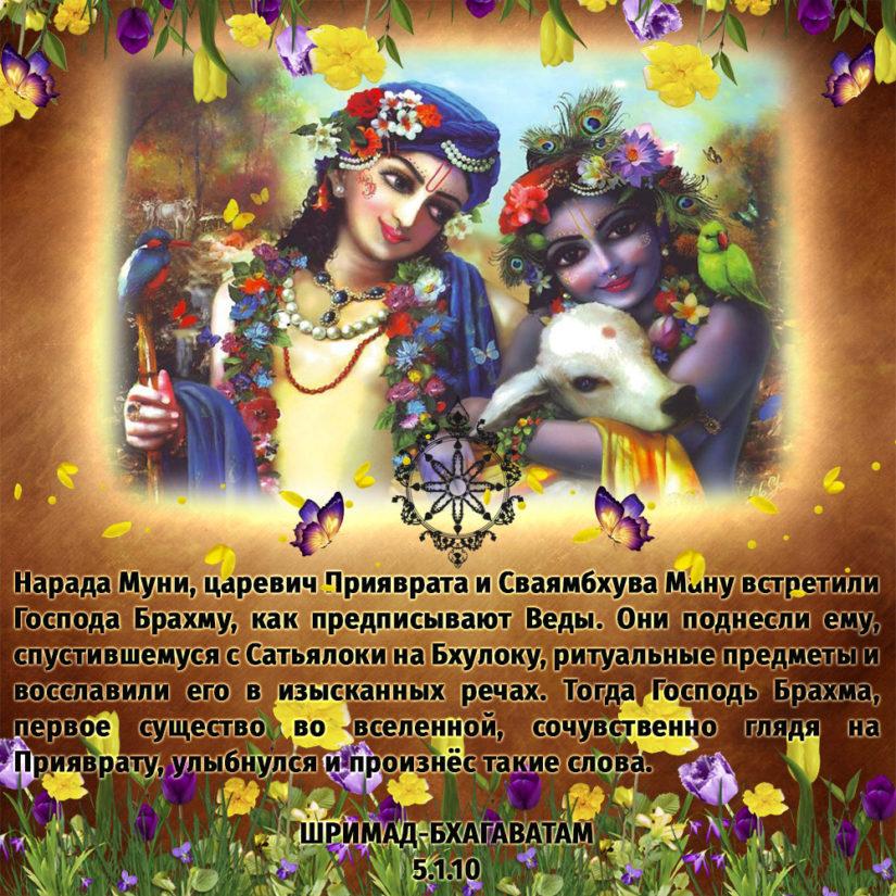 Нарада Муни, царевич Прияврата и Сваямбхува Ману встретили Господа Брахму, как предписывают Веды. Они поднесли ему, спустившемуся с Сатьялоки на Бхулоку, ритуальные предметы и восславили его в изысканных речах. Тогда Господь Брахма, первое существо во вселенной, сочувственно глядя на Прияврату, улыбнулся и произнёс такие слова.