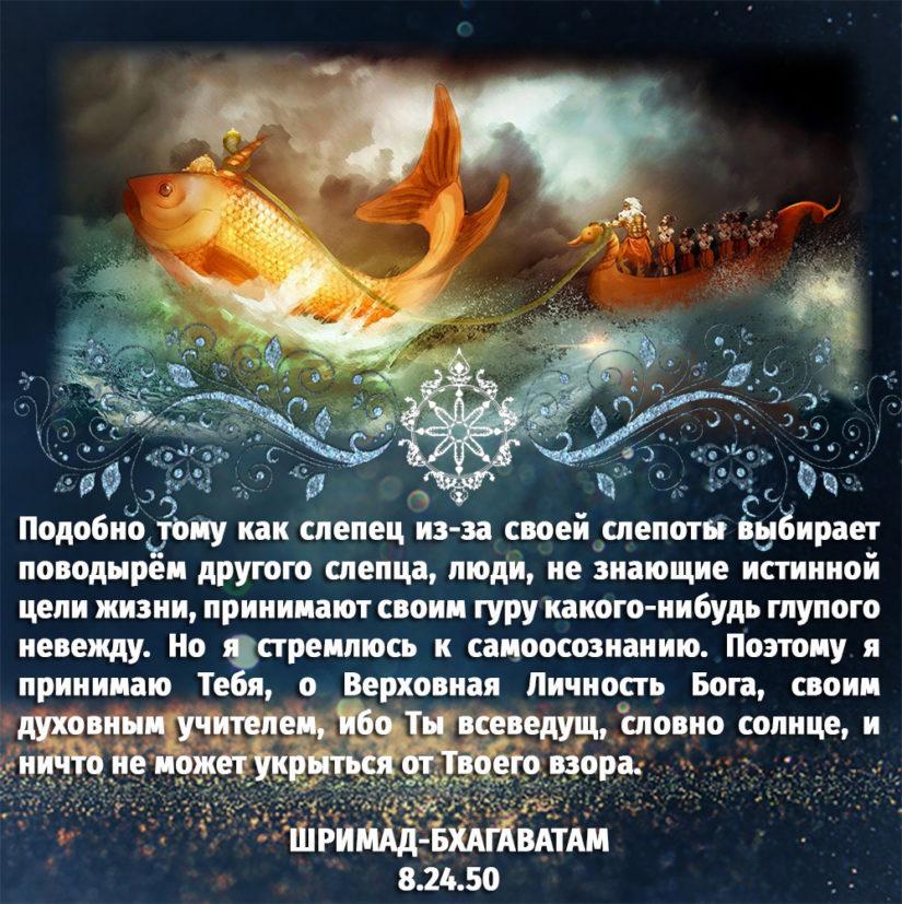 Подобно тому как слепец из-за своей слепоты выбирает поводырём другого слепца, люди, не знающие истинной цели жизни, принимают своим гуру какого-нибудь глупого невежду. Но я стремлюсь к самоосознанию. Поэтому я принимаю Тебя, о Верховная Личность Бога, своим духовным учителем, ибо Ты всеведущ, словно солнце, и ничто не может укрыться от Твоего взора.