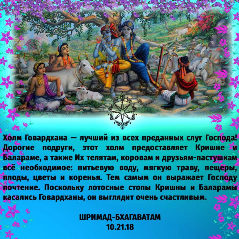 Холм Говардхана — лучший из всех преданных слуг Господа! Дорогие подруги, этот холм предоставляет Кришне и Балараме, а также Их телятам, коровам и друзьям-пастушкам всё необходимое: питьевую воду, мягкую траву, пещеры, плоды, цветы и коренья. Тем самым он выражает Господу почтение. Поскольку лотосные стопы Кришны и Баларамы касались Говардханы, он выглядит очень счастливым.