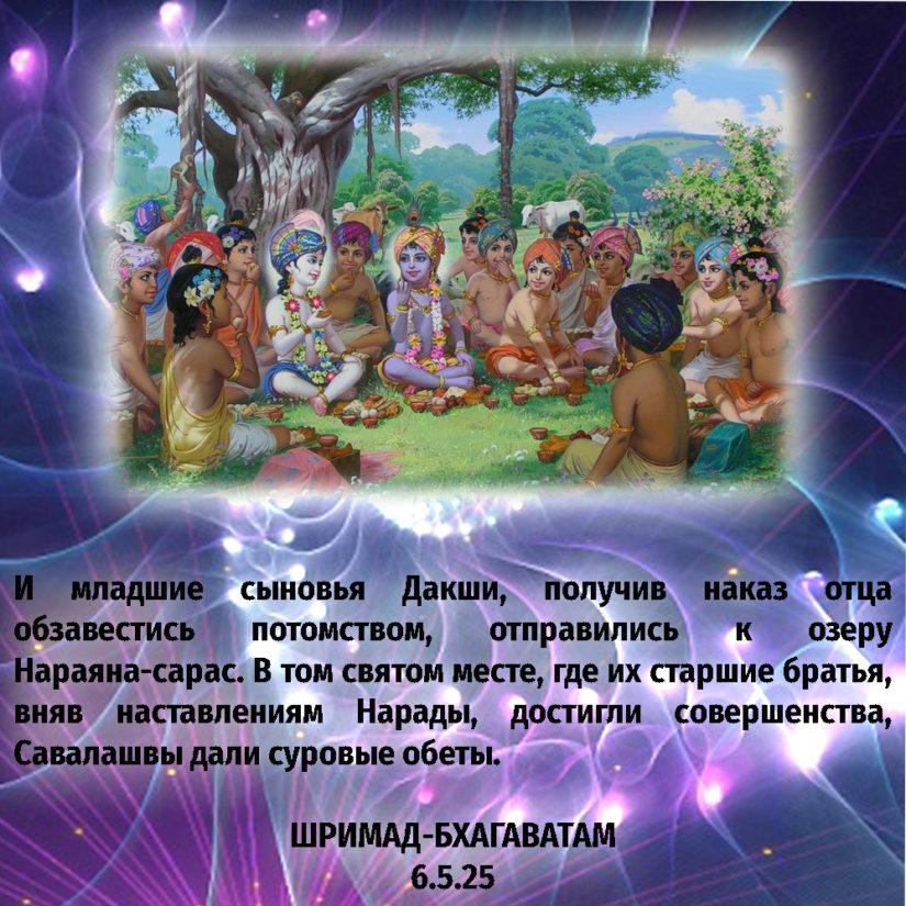И младшие сыновья Дакши, получив наказ отца обзавестись потомством, отправились к озеру Нараяна-сарас. В том святом месте, где их старшие братья, вняв наставлениям Нарады, достигли совершенства, Савалашвы дали суровые обеты.